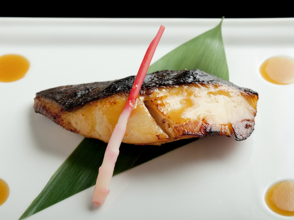 Black_Cod_Miso_photographed_by_Steven_Freeman